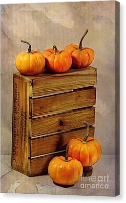 Autumn Still Life Canvas Print by Judi Bagwell