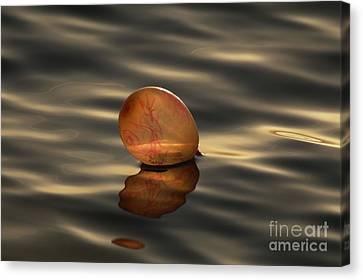 Balloons On The Water Canvas Print by Odon Czintos