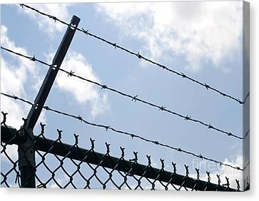 Barbed Wire Canvas Print by Blink Images