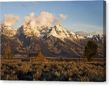 Barn And Corral On Mormon Row Canvas Print