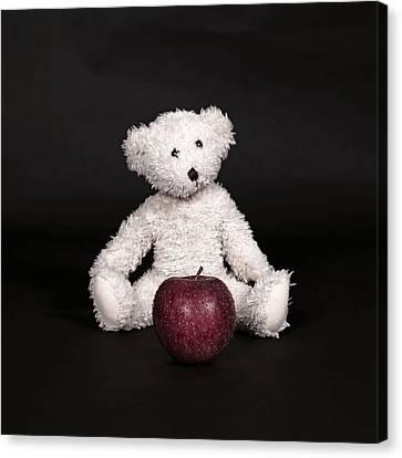 Bear And Apple Canvas Print by Joana Kruse
