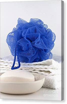 Blue Bath Puff Canvas Print by Blink Images