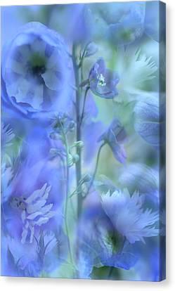 Blue Delphinium Canvas Print by Bonnie Bruno