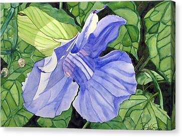Blue Sky Vine Canvas Print by Debi Singer