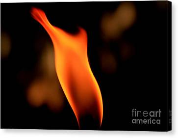 Body Of Fire 2 Canvas Print by Arie Arik Chen