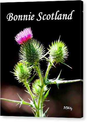 Canvas Print featuring the photograph Bonnie Scotland by Patrick Witz