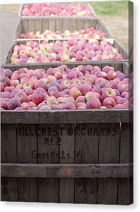 Canvas Print featuring the photograph Bountiful by Linda Mishler