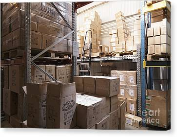 Boxes Stored In A Warehouse Canvas Print by Magomed Magomedagaev