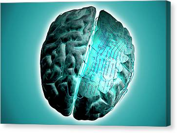 Brain With Circuit Board Canvas Print