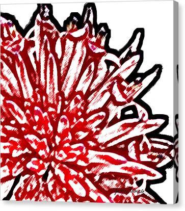 Bromeliad Canvas Print by James Temple