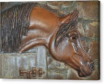 Bronze Arabian Horse Relief Canvas Print by Valerie  Evanson