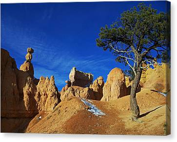 Bryce Canyon Utah Canvas Print