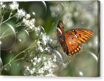 Bubble Fly Canvas Print by Steven Richardson