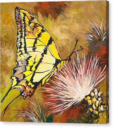 Butterfly Canvas Print by Sandy Tracey