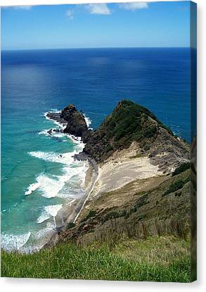 Cape Reinga - North Island Canvas Print by Peter Mooyman