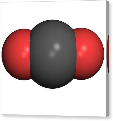 Carbon Dioxide Molecule Canvas Print by Friedrich Saurer