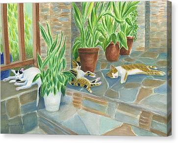 Cat Nap Time  Canvas Print by Jeanne Kay Juhos