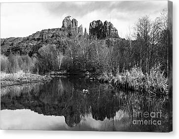 Cathedral Rock Reflections Landscape Canvas Print