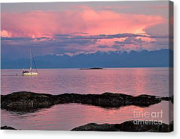 Cattle Point And The Strait Of Juan De Fuca Canvas Print by Louise Heusinkveld