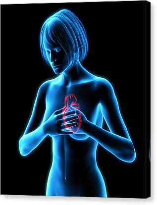 Chest Pains Canvas Print by Roger Harris