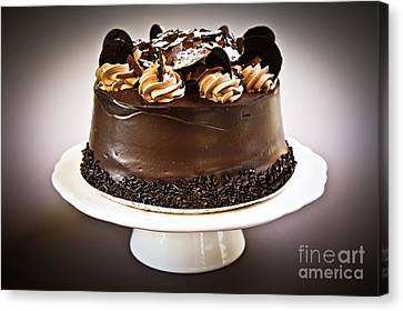Chocolate Cake Canvas Print by Elena Elisseeva