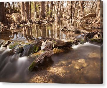 Cibolo Creek Canvas Print by Paul Huchton
