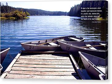 Clear Lake At Mckenzie Pass Canvas Print by Mick Anderson