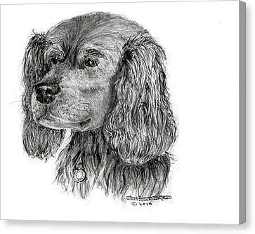 Canvas Print featuring the drawing Cocker Spaniel by Jim Hubbard
