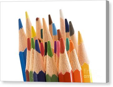 Colorful Pencils Canvas Print by Soultana Koleska