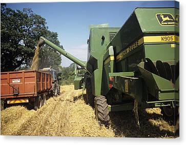 Combine Harvester Canvas Print by David Aubrey