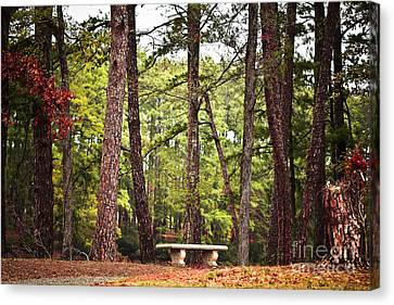 Come Sit A Spell Canvas Print by Kim Henderson