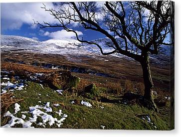 Comeragh Mountains, County Waterford Canvas Print