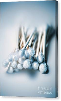 Cotton Swabs Canvas Print by HD Connelly