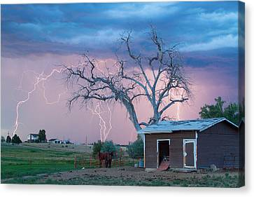 Country Horses Lightning Storm Ne Boulder County Co  76 Canvas Print by James BO  Insogna
