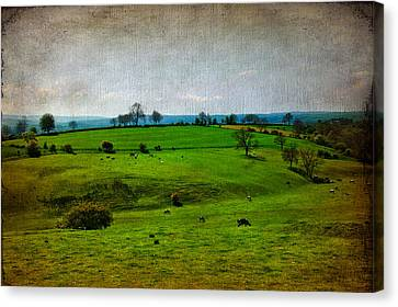 Farm Fields Canvas Print - Countryside by Svetlana Sewell