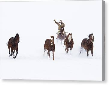 Cowboys And Horses In Winter Canvas Print by Frank Lukasseck