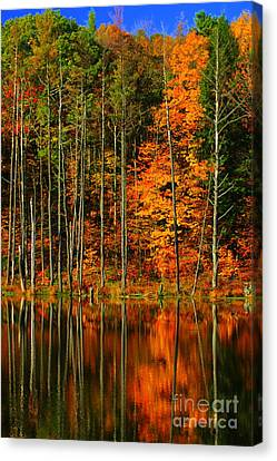 Coxsackie New York State Canvas Print by Mark Gilman