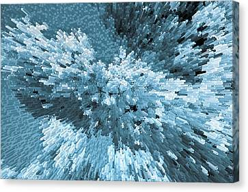 Crystal Flowers Canvas Print by David Pyatt