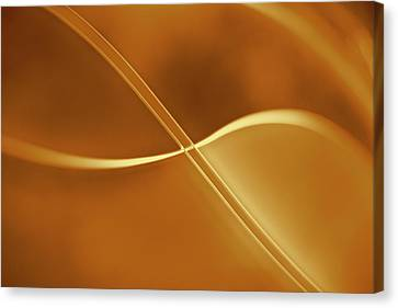 Curved Intersecting Lines Canvas Print by Ralf Hiemisch