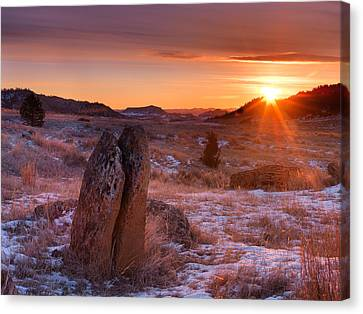 Custer Natonal Forest Winter Canvas Print by Leland D Howard