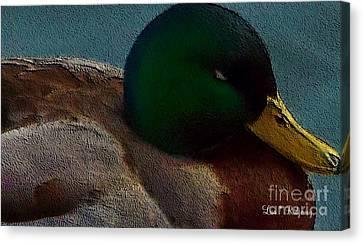 Dad's Mallard Duck Canvas Print by Lisa  Ridgeway