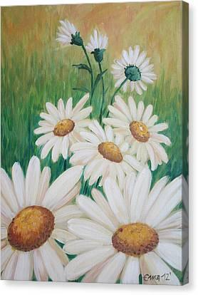 Daisies Canvas Print by Ema Dolinar Lovsin