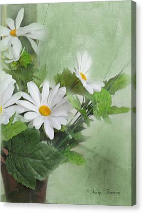 Canvas Print featuring the photograph Daisies by Mary Timman