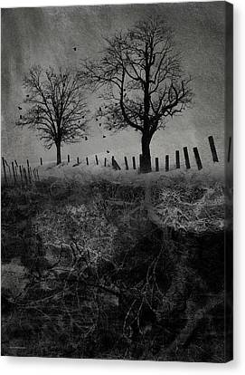 Dark Roost Canvas Print by Ron Jones