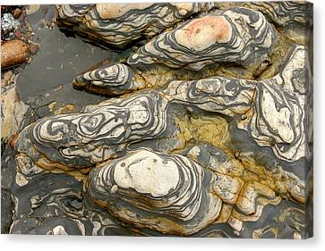 Detail Of Eroded Rocks Swirled Canvas Print by Charles Kogod