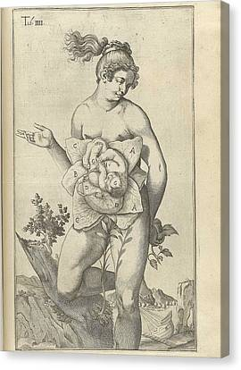 Development Of The Fetus. Female Figure Canvas Print by Everett
