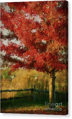 Maple Tree In Full Color/digital Painting  Canvas Print by Sandra Cunningham
