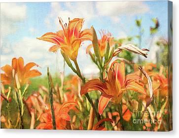 Digital Painting Of Orange Daylilies Canvas Print
