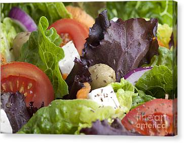 Romaine Canvas Print - Dinner Salad by Charlotte Lake