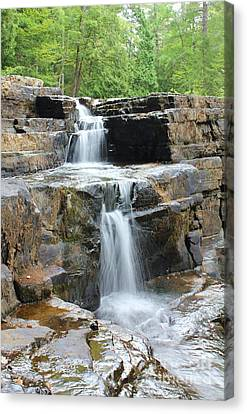 Canvas Print featuring the photograph Dismal Falls II by Laurinda Bowling
